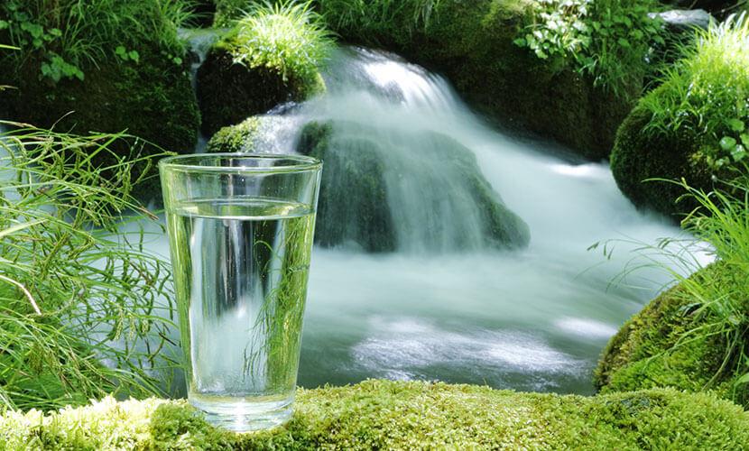 ガイアの水 湧き水